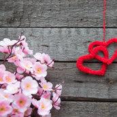 Spring cherry wallpaper