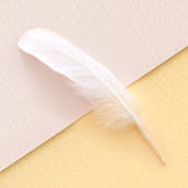 Feather [LG Home+]
