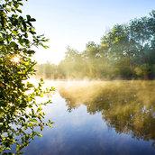 Fog on river wallpaper